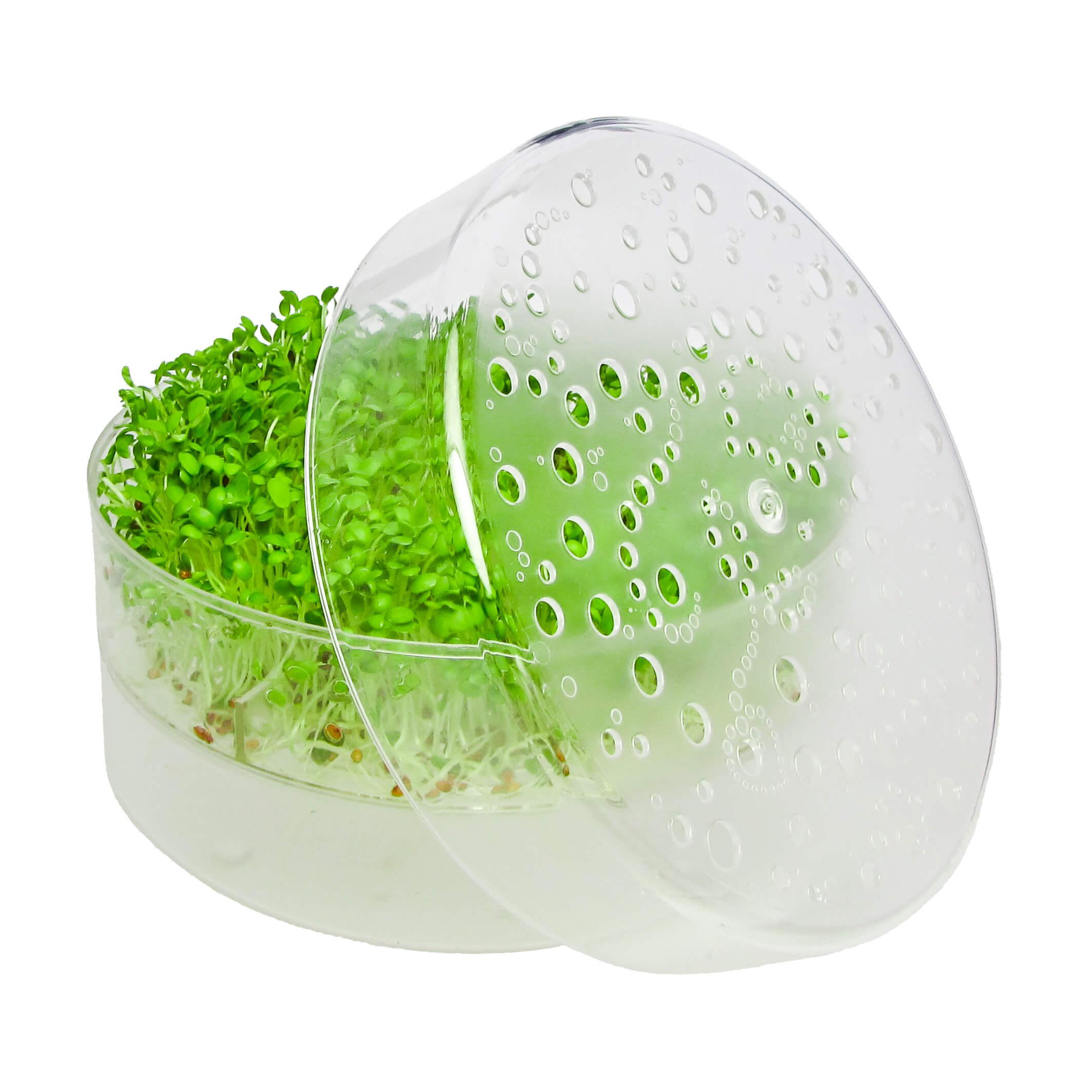 SpirePerle til spirer og mikrogrønt